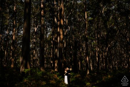 Une minute tranquille ensemble pour ce couple fiancé lors d'une séance de portraits dans la forêt de Boranup
