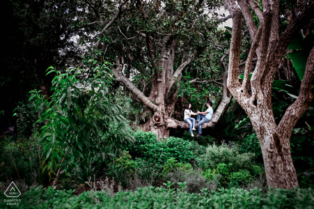 Gardens Central Park, Cape Town engagement photographer: We saw this big tree and I had the idea to place them inside of it, we ended up with this pose