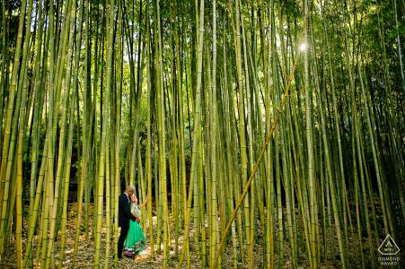 Hakone Garden, Saratoga, California engaged couple roaming in a Japanese bamboo garden