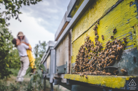 Floridia engagement shoot con una pareja cerca de colmenas de abejas en Sicilia, Italia