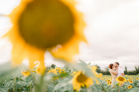 Vendée, France Couple embracing and laughing in their own sunflower field during an engagement shoot