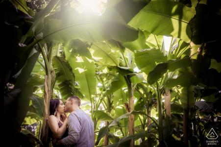 Pre wedding session in the green tropics of Giardini Sigurtà, Valeggio sul Mincio, Italy