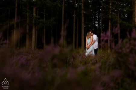 Heather près d'Eindhoven Portrait d'engagement de couple dans la forêt fleurie