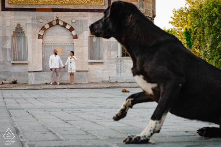 İstanbul Couple and the dog posing for engagement pictures in Turkey