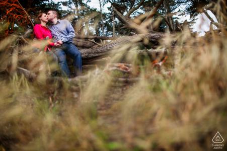 Romance de San Francisco en el bosque de cipreses durante una sesión de retratos de compromiso con la naturaleza