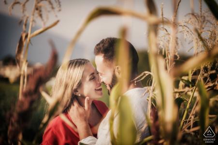 Fotografía de participación de TI de los campos de maíz del campo de Schio (Vicenza - Italia)
