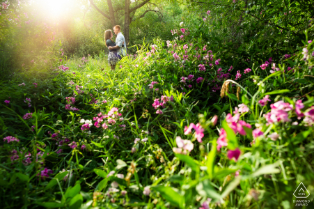 Golden, Colorado Sun bathes the flowering meadow in golden light during this summer engagement session