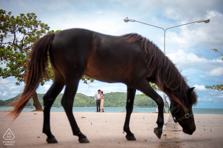 Marine Corps Bay Toei Ngam Beach, Sattaheep, Chonburi beach couple photography session before the wedding day. Photographer said: It might look quite strange with the pre-wedding photo with the animal but a horse wandered around the shooting