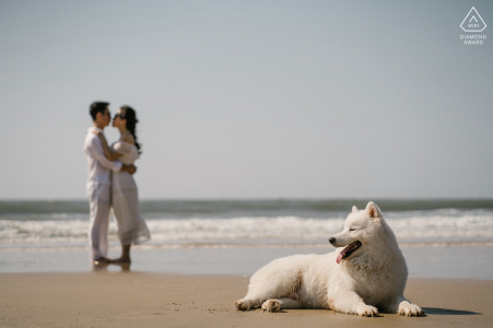 Ho Tram beach, Vietnam beach couple photography session before the wedding day with a dog lying in the sand