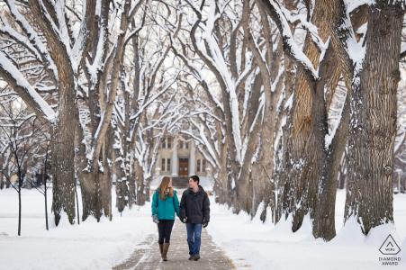 Fort Collins couple engagé photo créée en se promenant sous les ormes géants à l'Université d'État du Colorado au cours d'une session d'hiver enneigée