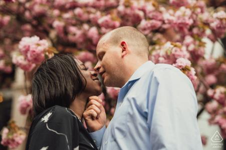 Boston, Massachusetts portrait e-session de couple s'embrassant devant un arbre à fleurs