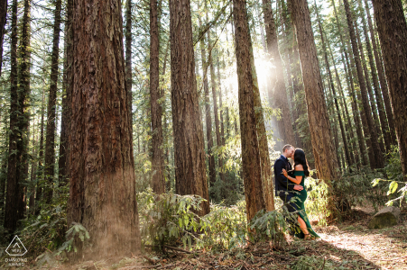 True Love Engagement Posed Portrait in Oakland capturing a CA couple taking a Walk in the woods in pale sunlight