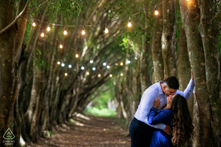 True Love Engagement Posed Portrait at Fazenda Água Limpa in Hidrolândia capturing a GO couple kissing in the tree lined path with lights above
