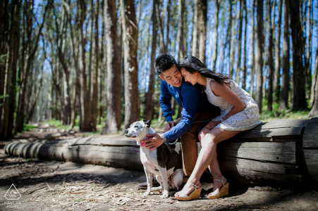 Lover's Lane, San Francisco couple e-session with their dog, The first love, always