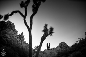 Southern California Engagement portraits. Joshua tree pre-wedding photography.