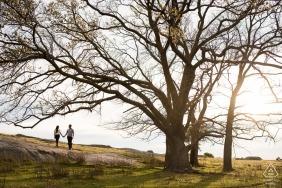 Victoria, Australia portret zaręczynowy w parku z wysokimi drzewami