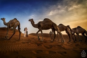 Reggio Calabria Engagement Photography with a couple surrounded by camels in the desert