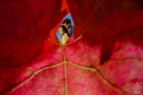 San Jose engagement photos of a couple seen through a fall, red leaf | pre-wedding portrait session