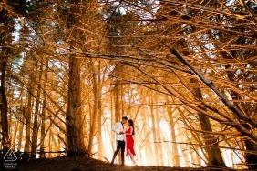 CA zdjęcia przed ślubem w lesie drzew | Sesja zdjęciowa z San Jose