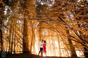 CA pre-wedding engagement pictures in the forest of trees | San Jose portrait shoot