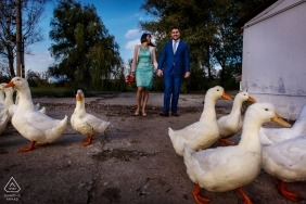 Duck filled wedding engagement portrait of a couple walking to the park  | Bucharest pre-wedding photographer session