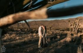 Séance photo d'engagement de Joshua Tree en Californie dans les collines