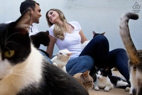 Goias Engagement Photography Session with many cats and a couple