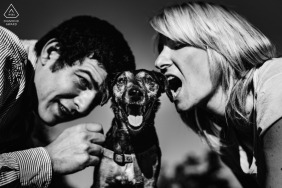 Dog and humans   Valladolid Engagement Photographer