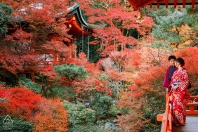 japan red leaf Engagement Photography of couple