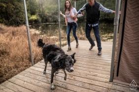 Koppel met een hond - Wisconsin Engagement Foto's van Stellen