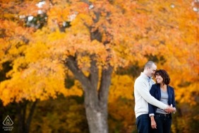 couple with colorful tree in New England - Rhode Island Engagement Photographer