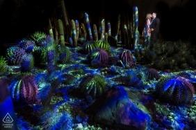 Electric Desert art installation - Arizona Engagement Photos