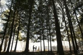 Le Pinete - Viggiù - Varese | Foto de noivado italiano | retrato de silhueta no parque com árvores altas