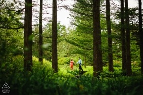 Longwood Gardens Engagement Portrait Session - A walk through the trees