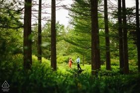 Séance de portrait d'engagement des jardins de Longwood - Une promenade à travers les arbres