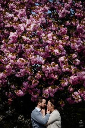 Un couple se tient face à face sous un grand arbre à fleurs roses lors de la séance photo précédant leur mariage à Middelheim par un photographe flamand d'Anvers.