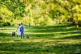 Couple walks their dogs in Central Park during engagement shoot