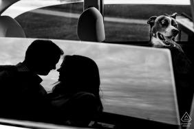 Monocacy Battlefiels Engagement Portrait of Couple e seu cachorro