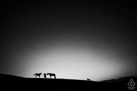 Adana Turkey Pre Wedding Portrait Session with two horses one dog and couple in a backlight