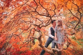 "Leura, Blue Mountains, NSW Pre-Wedding Photographer: ""It was end of May in Sydney's Blue Mountains. I saw that beautiful tree with orange/red leaves, so I told the couple to crawl underneath. I followed them and this wonderful image happened"""