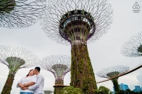 新加坡參與攝影師說:新加坡有很多有趣的結構,這些巨樹吸引我。 我決定和幾個人一起拍攝這些樹。