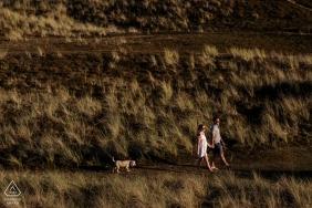 Les dunes de sable, St Ouen, Jersey, Channel Islands Engagement Photos | Le couple a amené leur chien avec eux pour leur séance de fiançailles. Je voulais inclure les couleurs et les textures du paysage - leur chien était amusant à suivre ensuite!