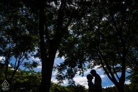 Dalat, Vietnã Mostre em silhueta o retrato de casamento pre sob as árvores grandes.