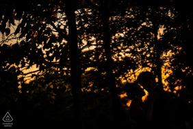 Dumbo pré mariage, pré mariée et le marié silhouette dans les arbres avec ciel orange