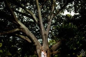 Western Australia Perth pre wedding portraits: A nice picture together under a giant tree.
