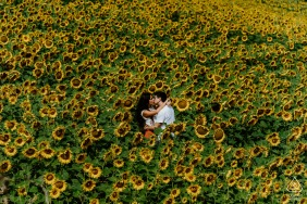 Marche - Italy pre-wedding photo session in a field filled with Love and sunflowers