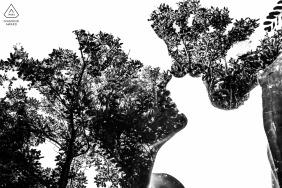 Campinas - São Paulo couple portraits with trees