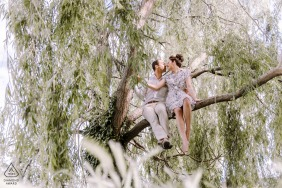 Engagement image of a couple sitting in a tree in Honfleur, France