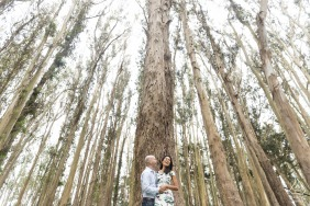 Lovers Lane photo engagement shoot of a couple amongst tall trees.