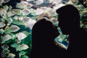 Engagement Photography Session at Two Oceans Aquarium, Cape Town - The couple loves fish and even own their own aquarium. They got engaged in the Two Oceans aquarium, so we decided to use as much fish elements as possible for their engagement photos.